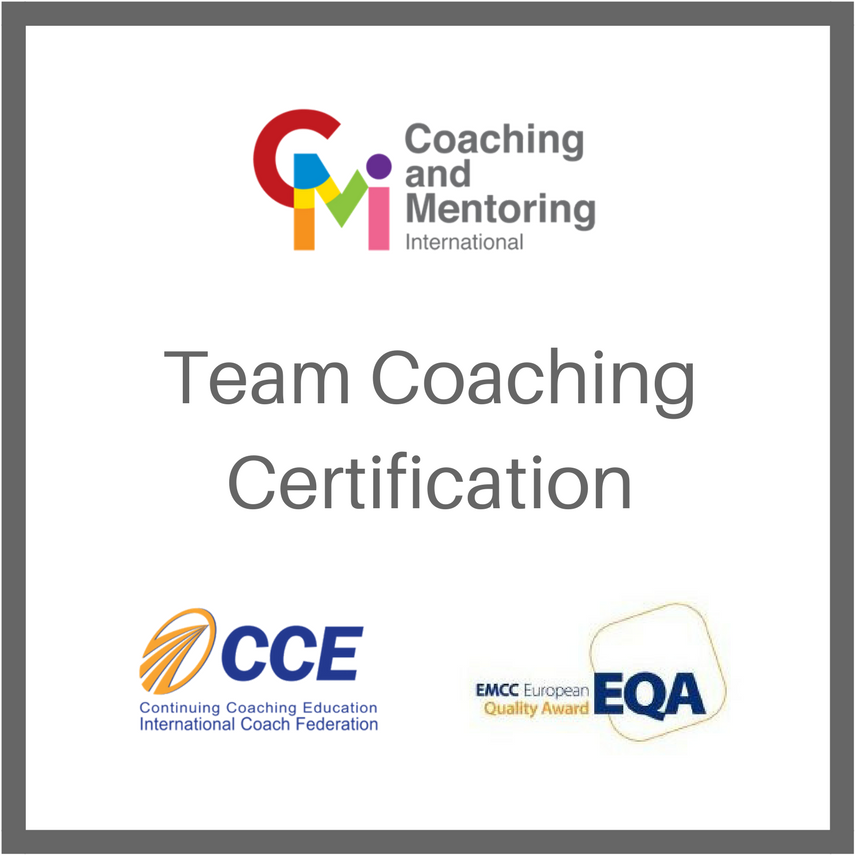 Team Coaching Certification Training Transcend International