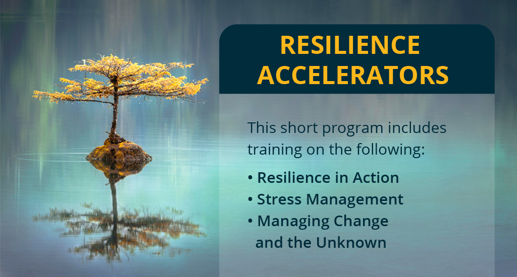 resilience accelerator new 01